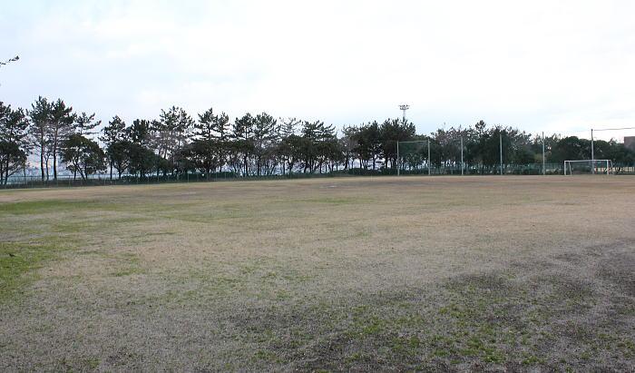 大黒ふ頭 中央 公園